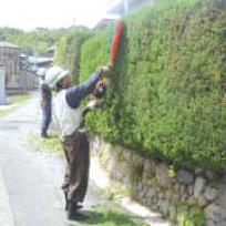 handyman-02